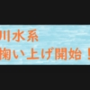 球磨川水系 稚鮎掬い上げ開始!