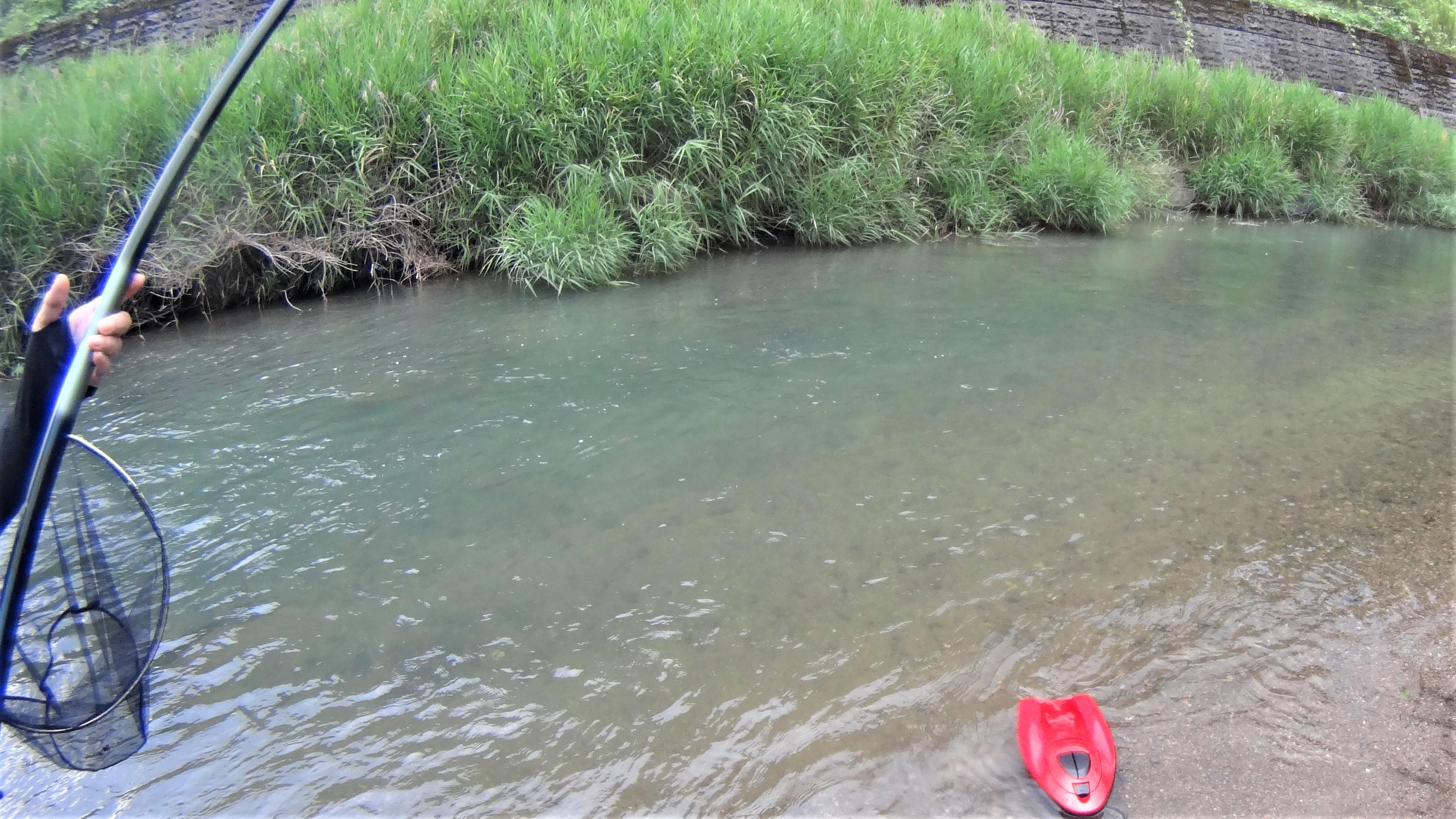 球磨川水系支流