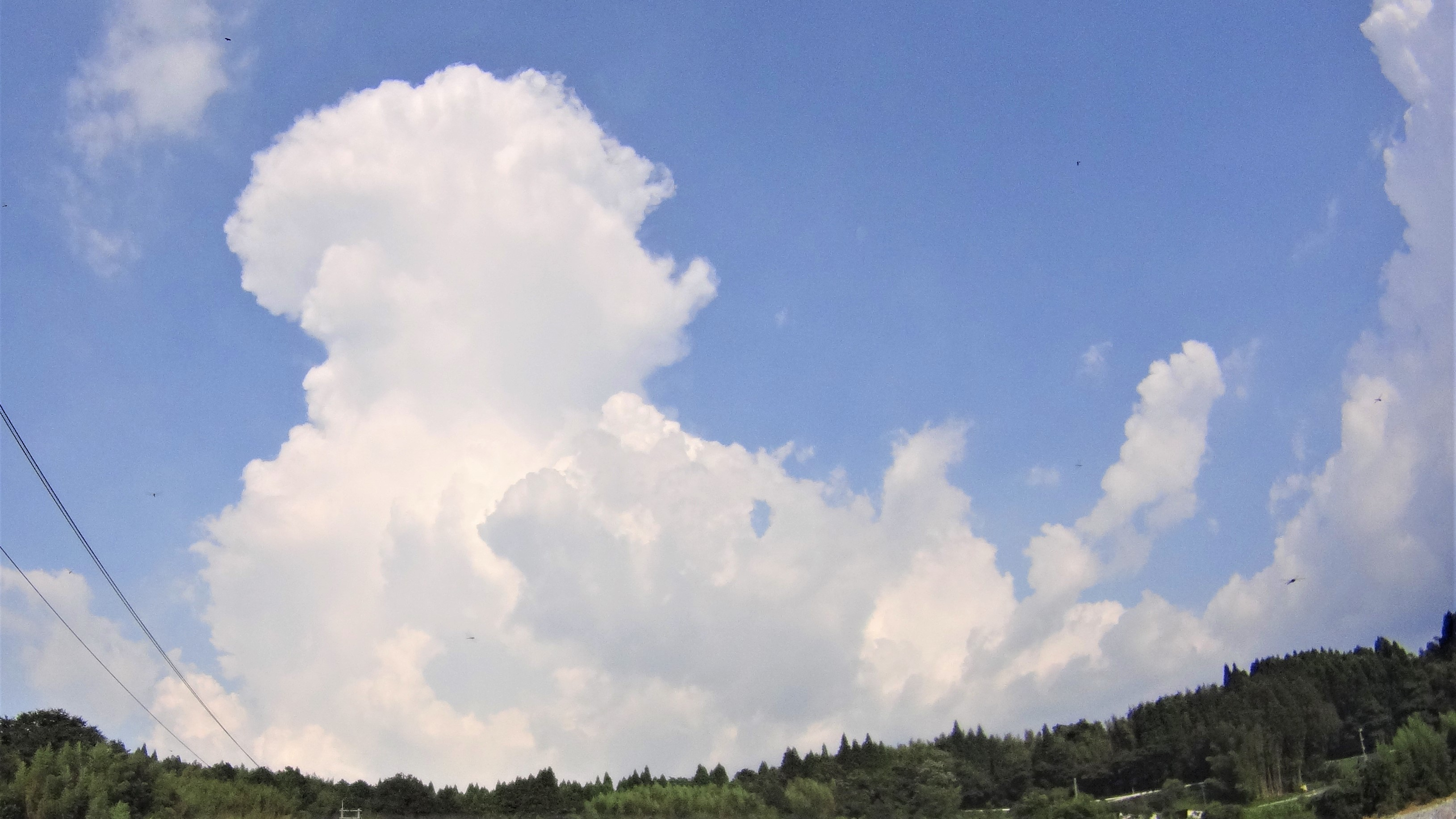 積乱雲で雷ドカドカ
