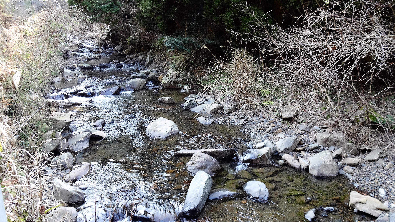 球磨川支流の渓流
