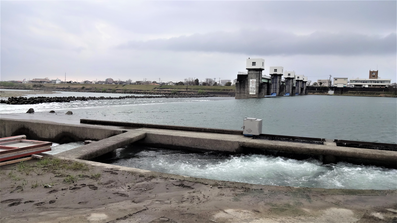 球磨川漁協稚鮎掬い上げ場