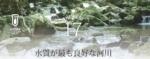 全国一級河川の水質現況