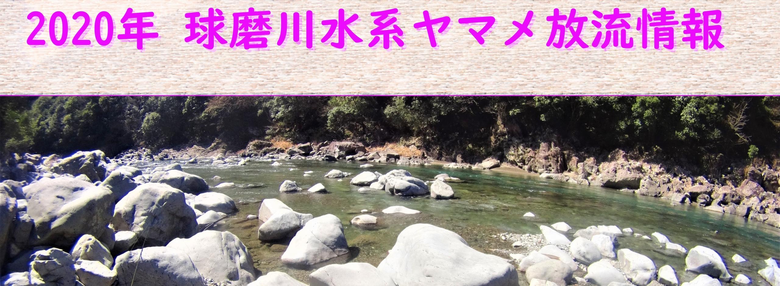 2020年 球磨川水系ヤマメ放流情報