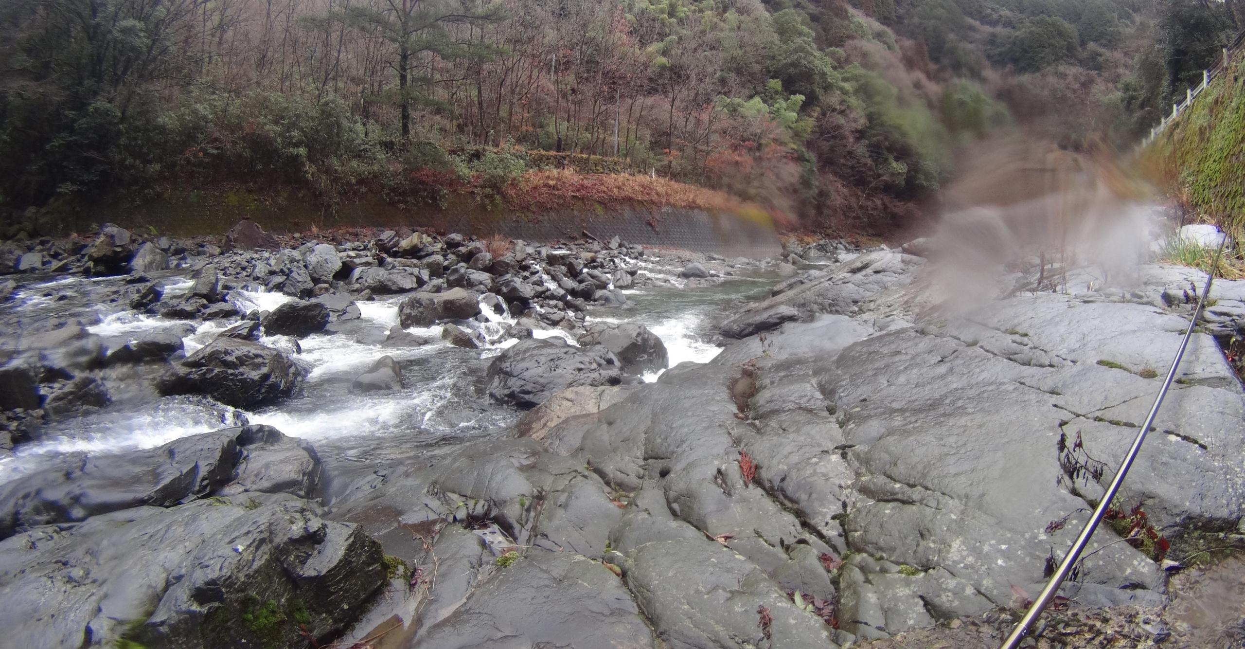 河川の様子