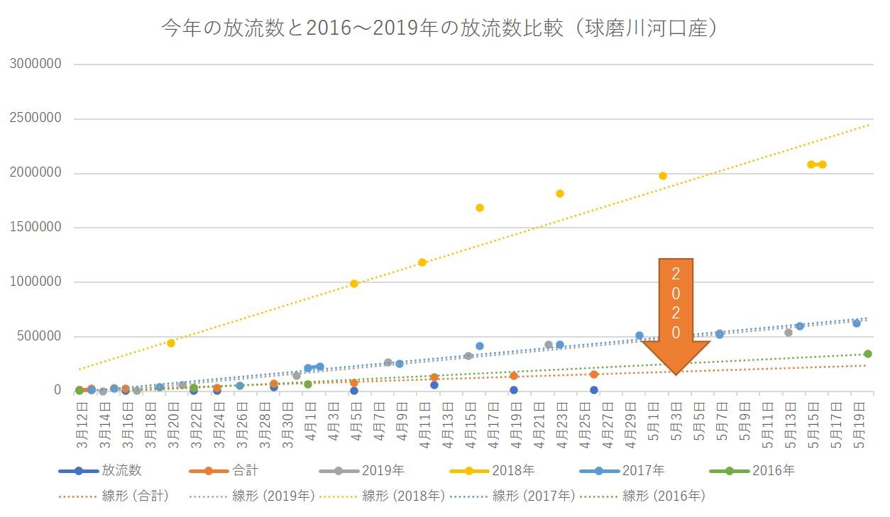 今年の放流数と2016~2019年の放流数比較(球磨川河口産)20200426
