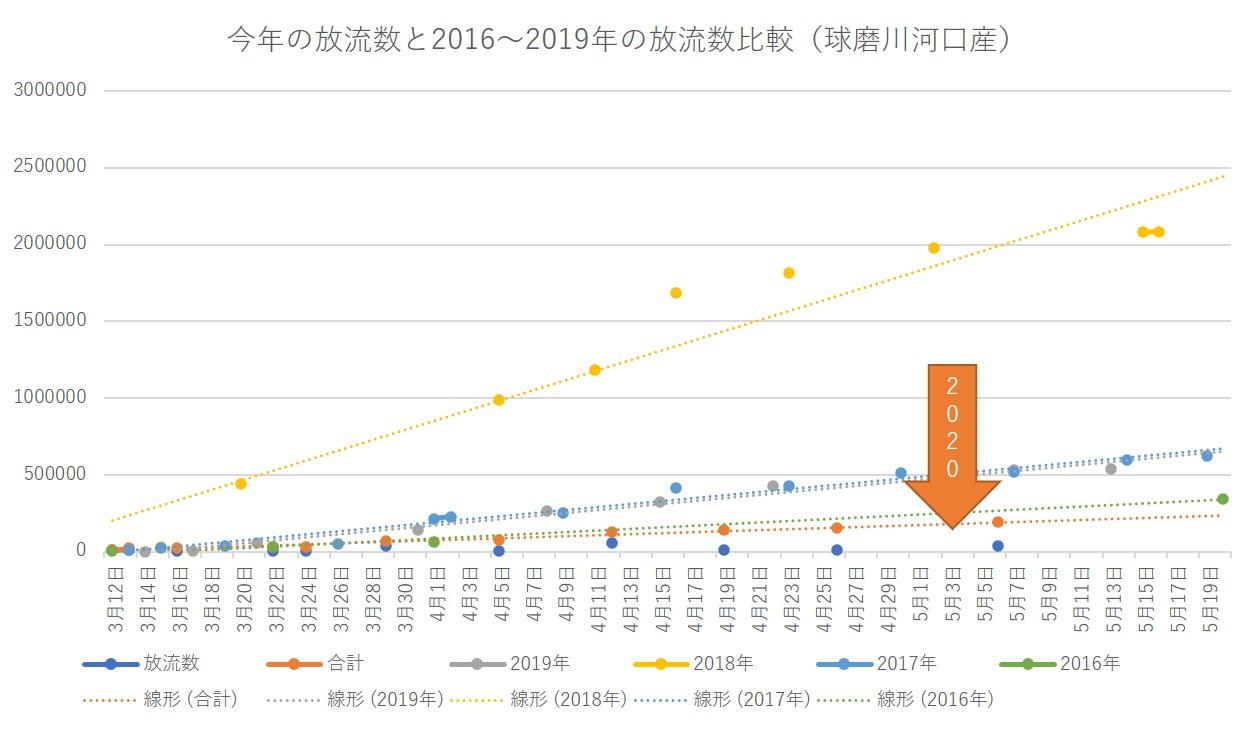 今年の放流数と2016~2019年の放流数比較(球磨川河口産)20200506